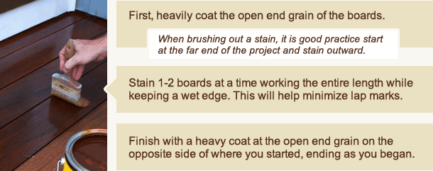 Staining Techniques